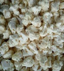 Органические IQF замороженные белый брокколи /