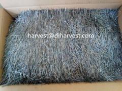 Harvst®熔体萃取不锈钢纤维/ss4 4 ss4 ss30去/ss309/ssc316