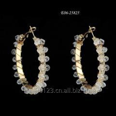 Hoop E06-25825  Wholesale earrings,Fashion