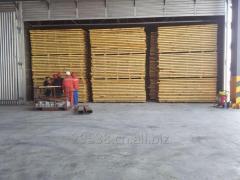 الخشب غرفة التجفيف