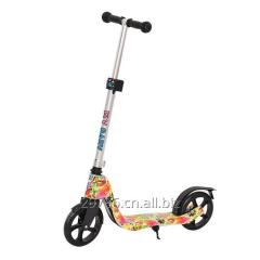 China Flybaby Kids City Scooter Steel Frame Doodle