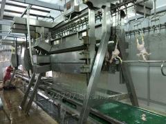Компактная линия по переработке птицы