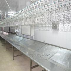 High quality Chicken processing line for