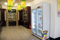 Pharmaceutical Freezer