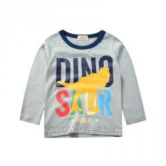 Детская хлопковая футболка Dino с длинным рукавом
