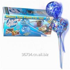 Watering Globes Plant Waterer Water Bulbs 2 Pack