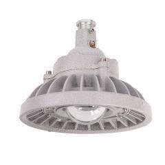 Промышленный взрывозащищенный светильник IP68 50W