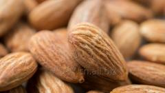 Available almond nuts