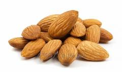 Top grade almond nuts