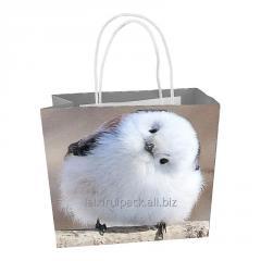 Custom biodegradable packaging paper bags...