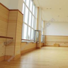 1004瑜珈地板
