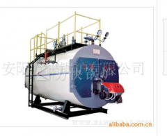 Heat pipe steam boilers