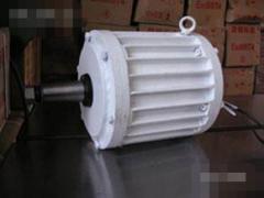 供应永磁风力发电机