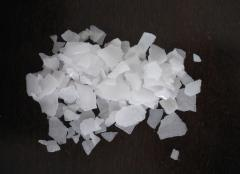 Caustic Soda    	  1310-73-2