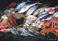 Seafood and sea products