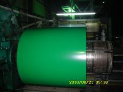 卷筒铁 Steel Coil  PPGI  CGCC