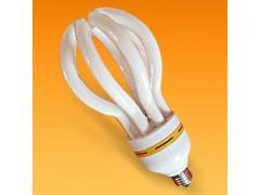 莲花形三基色节能灯|莲花灯|节能灯|照明荧光粉节能灯灯厂