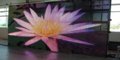 LED  mesh display