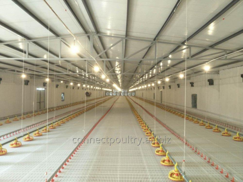 automatic_broiler_feeding_and_drinking_system