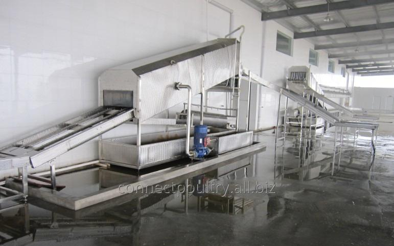 crates_conveyor_for_birds_receiving_machine