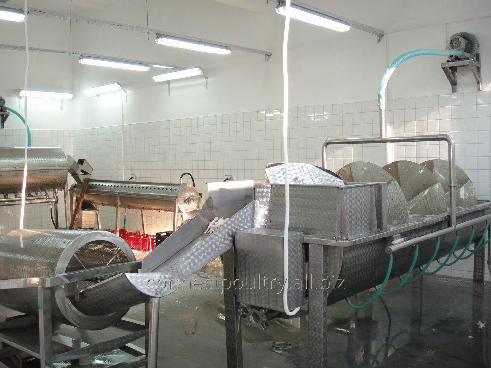 automatic_large_quantity_chicken_feet_processing