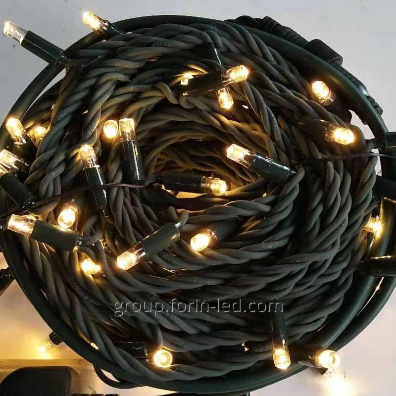 led_festoon_led_light_resistant_220v_10m_100led
