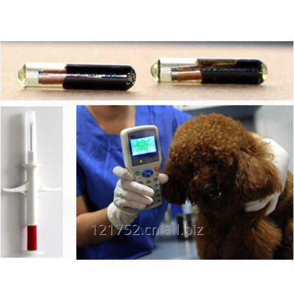 animal_injection_tag