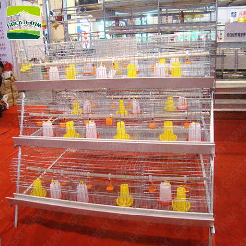 greatfarm_chicken_cage