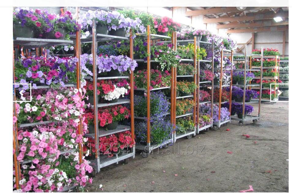 manufecturing_flower_pot_display_transportation