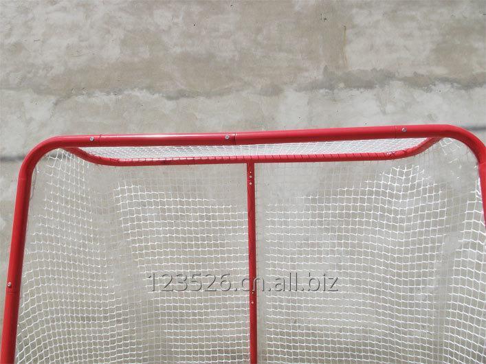 ice_hockey_net