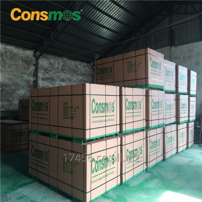 consmos_osb_1220x2440x9mm