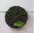 NPK Compound Fertilizer (17-17-17-TE)