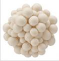 Fresh White Beech Mushroom