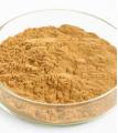 Guarana Seed Extract Exporter