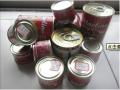 850g*12tins番茄酱罐头