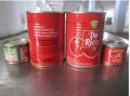 800g*12tins番茄酱罐头