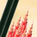 450/750V及以下聚氯乙烯绝缘电缆(电线)系列