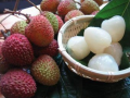 Chinese fresh Litchi fruit