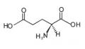 L-谷氨酸 (L-Glutamic Acid)