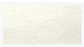 TS1-001涤纶耐温针刺过滤毡