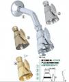 高档淋浴缸全铜节水花洒水龙头(ISO9001)_1