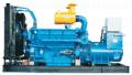 柴 油 发 电 机 组