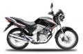 Motorcycle(Formula)
