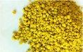 纯天然青海油菜花粉胜松花粉 蜂花粉