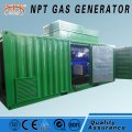 Biomass generator 10-350 kW