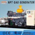 Biomass 10-500 kw generator Weifang