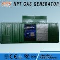 Biomass generator power 10-500 kW
