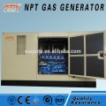 50kW natural gas generator set with sound proof canopy