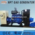 CE approved 10-500kW china generator price