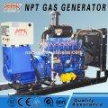 Generar cogeneración de biogás 10-1000 cuadrado